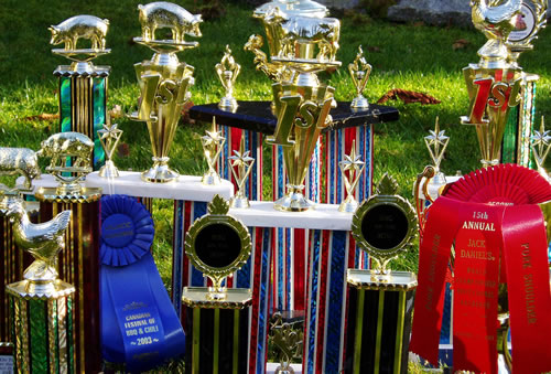 Photo - The Butt Shredders' Barbecue Trophies